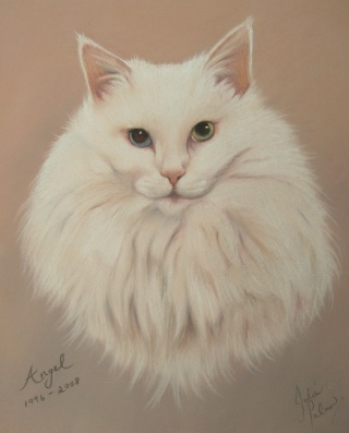 white cat in pastels